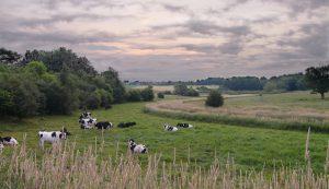 Evidencing rural need: Parish Profile Reports