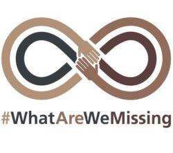 #WhatAreWeMissing Logo